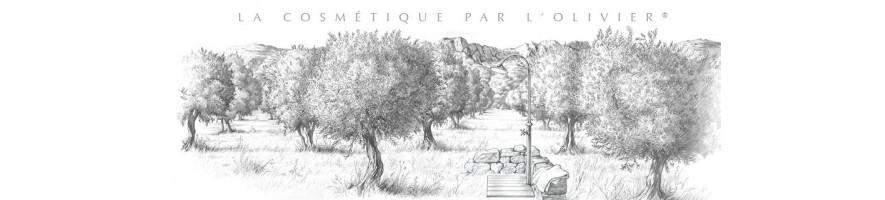 Une olive en Provence
